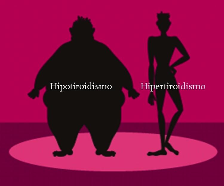 Personas tendrn como tomar correctamente herbalife para bajar de peso